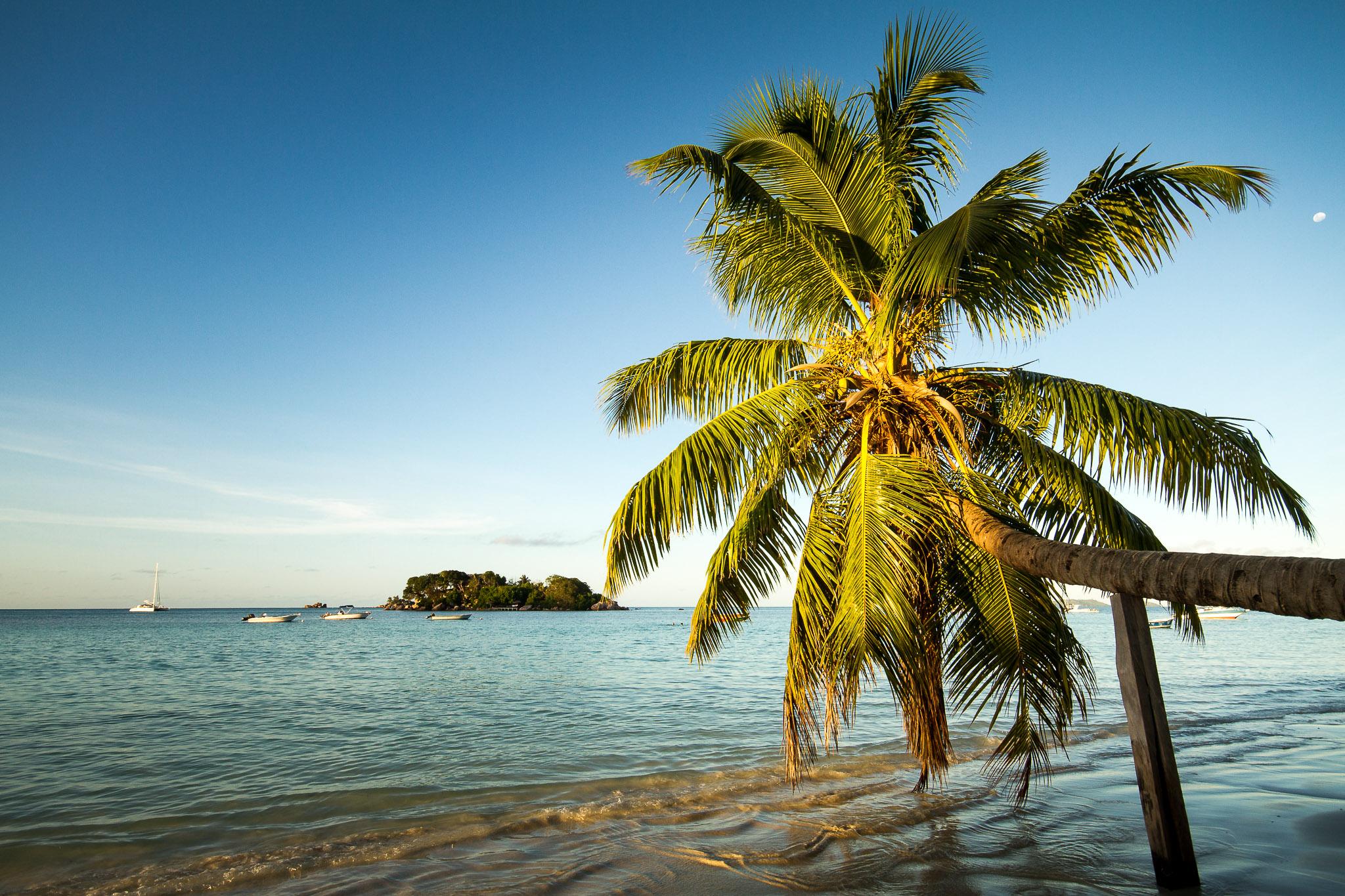 Anse Volbert | Praslin, Seychellen